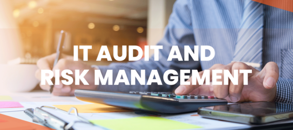 IT Audit And Risk Management